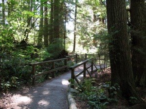 Stanley Park Trails photo credit: vancouvertrails.com