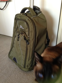 New carry-on with Duma
